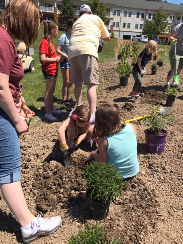 Planting a Pollinator's Garden
