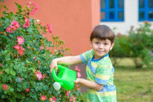 Preschoolers help with gardening.