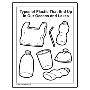 Types of plastics that end up on the beach.