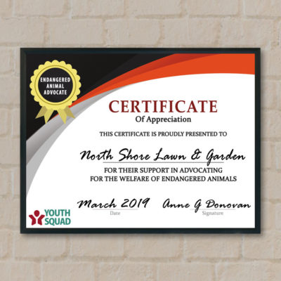 Thank You Certificates for Volunteers and Supporters