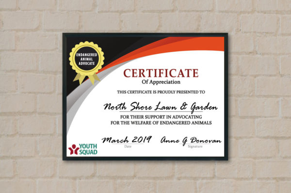 Free Thank You Certificate Download