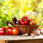 Youth Squad® Nutrition Community Service Program