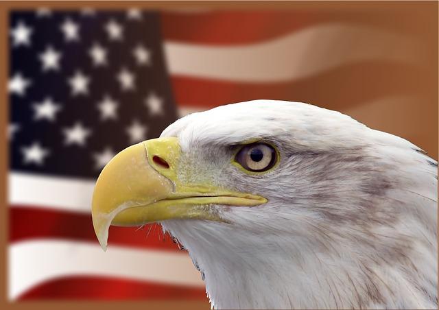 Youth Squad® Patriotism Community Service Program