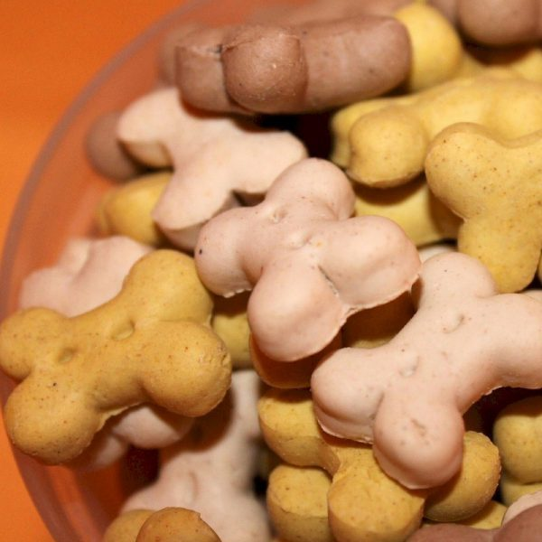 This image has an empty alt attribute; its file name is dog-treats-600x600.jpg