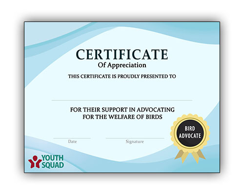Volunteer Thank You Certificate